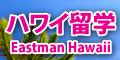 ハワイ留学ロゴ